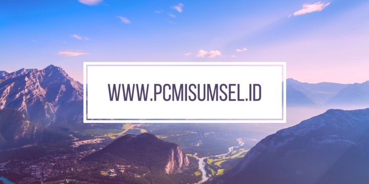 www.pcmisumsel